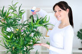 Beautiful woman cares for her flowers — Stock Photo