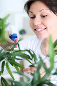 Young smiling woman spraying flowers — Stock Photo