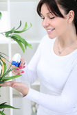 Woman cultivating flowers — Stock Photo