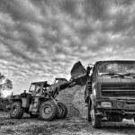 Excavator — Stock Photo #8251824