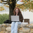 Twenties redhead studying outdoors - Stock Photo