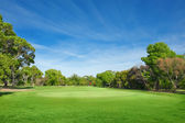 Beautiful golf course — Stock Photo