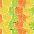 Fresh citrus fruits background — Stock Photo