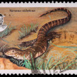 A 2-lilangeni stamp printed in Swaziland — Stockfoto