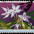 A 2-baht stamp printed in Thailand — Foto de Stock