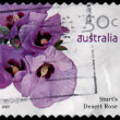 A 50-cent stamp printed in Australia — Foto de Stock