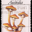 A 55-cent stamp printed in Australia — Stock Photo