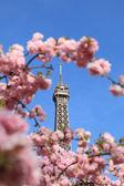 Parisiska detalj — Stockfoto