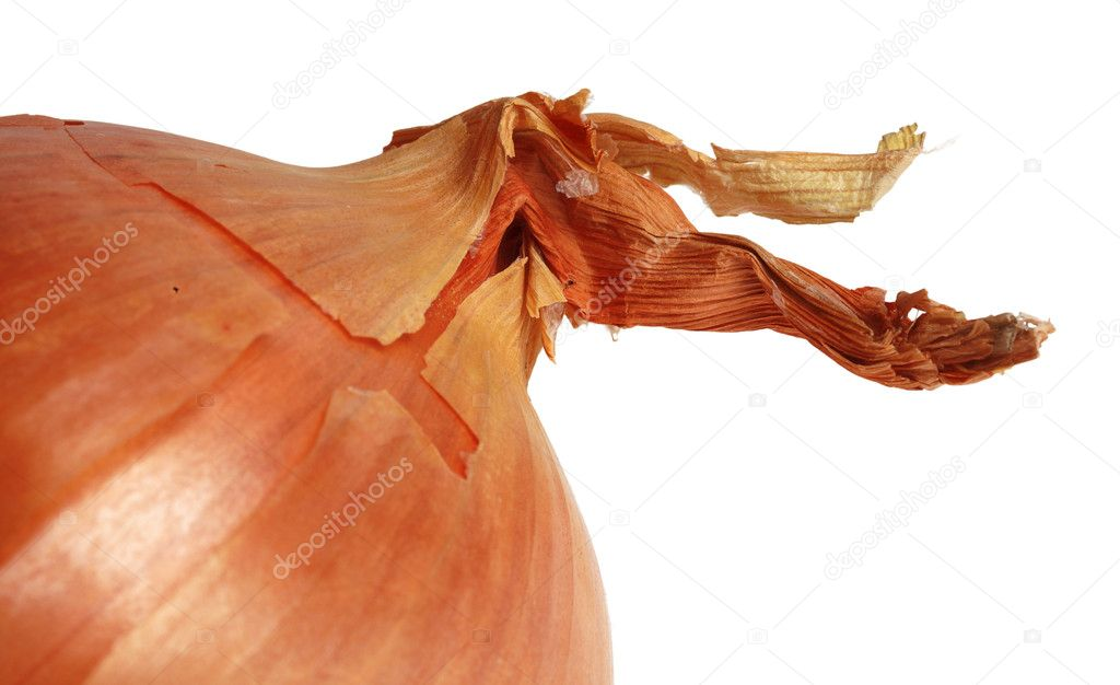 Detail image of an onion against a white background. — Stock Photo #8991700