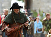 Medieval troubadour — Stock Photo