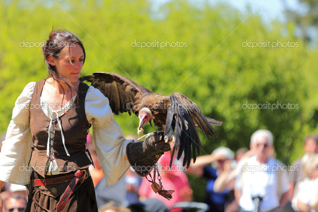 Arville,France,May 23rd 2010: A female bird tamer with a bald eagle on her hand during a birds tamer show.  Stock Photo #9064131