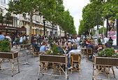 Avenue des Champs-Élysées — Fotografia Stock