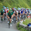 The peloton - Stock Photo
