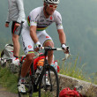 Постер, плакат: The cyclist Thor Hushovd