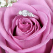 Wedding Ring in Rose, Will you marry me? — Stock Photo #9006118