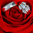 Wedding Ring in Rose, Will you marry me? — Foto Stock