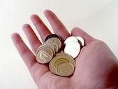 Dinero en mano — Foto de Stock