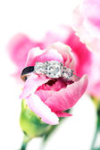 Pink Flower with Ring — Stock Photo