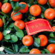 Chinese New Year Decoration - Red greeting card on tangerines tr — Stock Photo