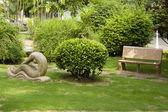 Garden — Photo