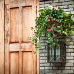 House decoration - Hanging houseplant basket and old style lamp — Stock Photo