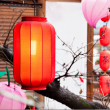 Stock Photo: Red lantern hang on the roof