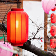 Red lantern hang on the roof — Stock Photo #9204627