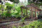 Wooden Pergola in park — Stock Photo