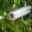 Stock Photo: Surveillance camera