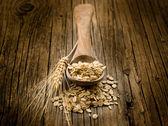 勺燕麦木背景上, — 图库照片