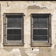 Two old windows with metallic grids — Stock Photo #8067101