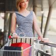 Young woman with shopping cart - Stock Photo