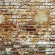 Grunge brick wall — Stock Photo #8351688