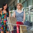 Young women with shopping cart — ストック写真
