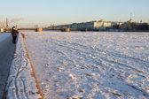 Most dvortsovyj — Zdjęcie stockowe