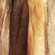 Stock Photo: Beige fur coats