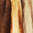 Fur coats — Stock Photo #7978660