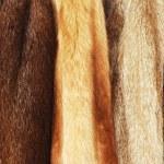 Fur coats — Stock Photo