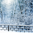 Silent snow-covered urban park in winter. — Stock Photo