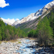 View of the mountains and river into the valley. Elbrus area — Stock Photo #10451645