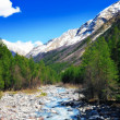 View of the mountains and river into the valley. Elbrus area — Stock Photo