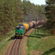 Freight diesel train — Stock Photo #10444114