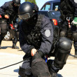 Stock Photo: Subdivision anti-terrorist police