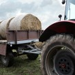 Stock Photo: Tractor loaded feed straw