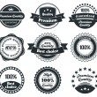 Retro Vintage Label collection — Stock Vector