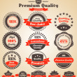 Premium Quality Labels. Design elements with retro vintage desig - Stock Vector