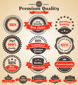 Premium Quality Labels. Design elements with retro vintage desig — Stock Vector