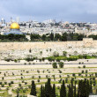 The old city of Jerusalem — Stock Photo #10229947