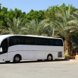 Tour Bus and Summer vacation — Stock Photo