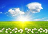 Springtime, conceptual image — Stock Photo